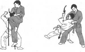图片161